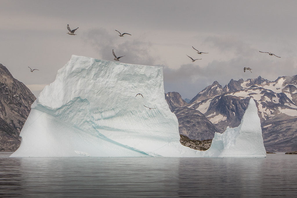 Iceberg - Arctic Exposure