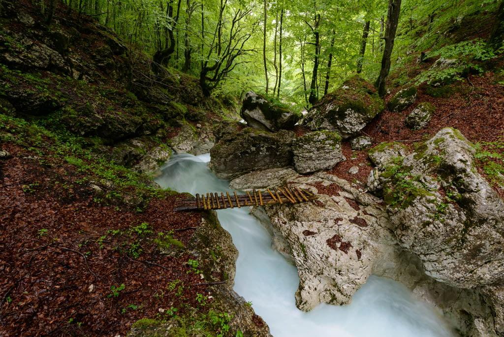 Slovenia - Arctic Exposure